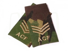 Rank Slide Pair (DPM) - Sgt ACF