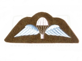 Qualification Badge - Para Wings (Colour)