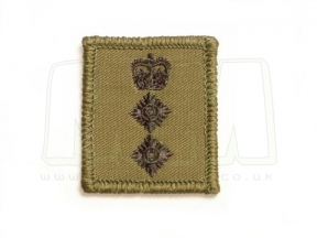 Helmet Rank Patch - Colonel (Subdued)
